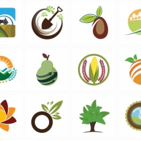 11 نکته مهم در طراحی لوگوی ساده
